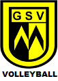 logo_volleyball